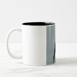 camel Two-Tone coffee mug