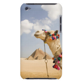 Camel with Pyramids Giza, Egypt iPod Touch Covers