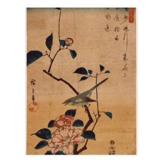 Camellia and Bush Warbler by Hiroshige Postcard