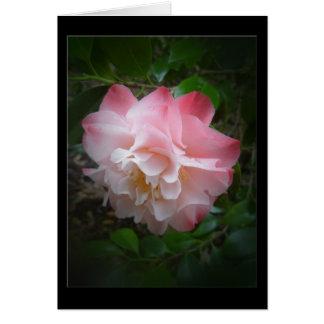 Camellia Blank Greeting Card