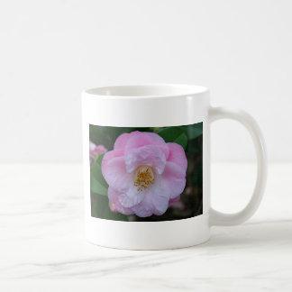 Camellia flower in bloom coffee mug