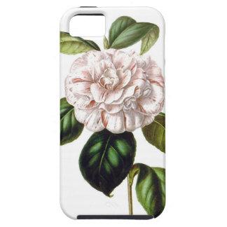Camellia Flower iPhone SE/ iPhone 5/5s case