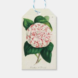 Camellia - It labels