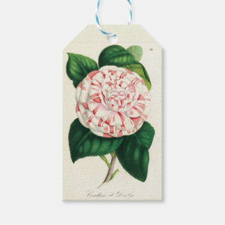 Camellia - It labels Pack Of Gift Tags
