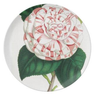 Camellia Plate