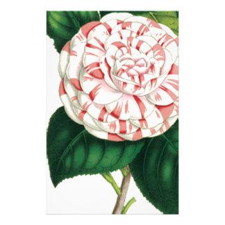 Camellia Stationery