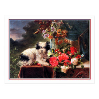 Camellias and a Terrier Postcard