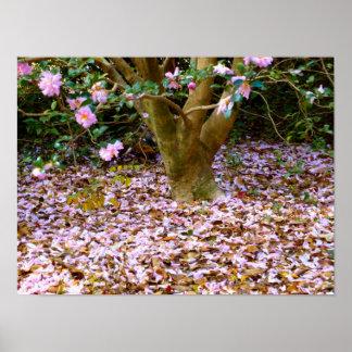 Camellias Fall Poster