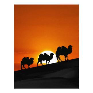 Camels at sunset letterhead design