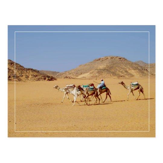 Camels near Wadi El-Seboua Temple, Egypt Postcard