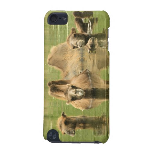 Camels Yum iPod Touch (5th Generation) Case