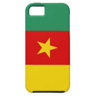 cameroon country flag case