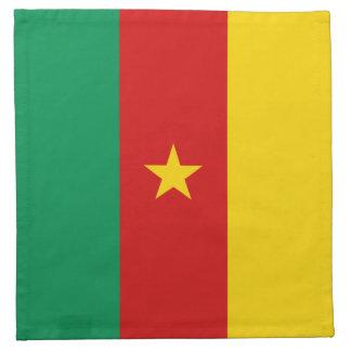 Cameroon Flag Napkin