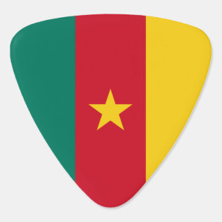 Cameroon Flag Pick