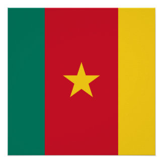 Cameroon National World Flag Perfect Poster