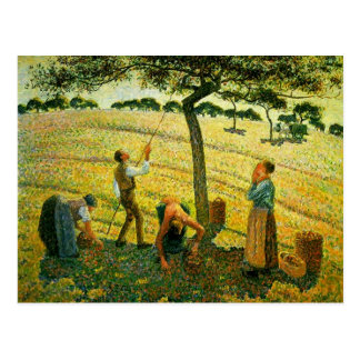Camille Pissarro- Apple Picking at Eragny-sur-Epte Postcard