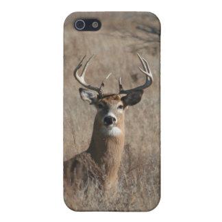 Camo Buck Whitetail Deer iPhone 5/5S Case