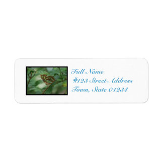 Camoflauged Butterfly Return Address Label
