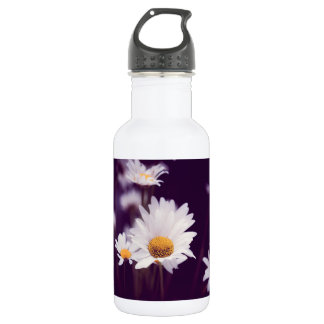 Camomile dreams 532 ml water bottle
