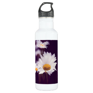 Camomile dreams 710 ml water bottle