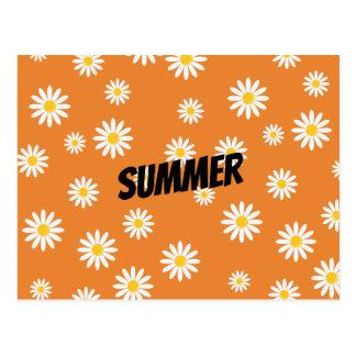Camomile Flowers Postcard
