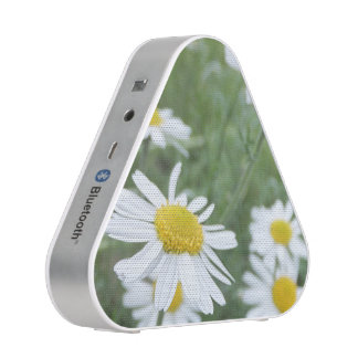 Camomile Garden Speaker