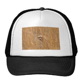 Camouflaged Yellow Labrador Retriever Trucker Hat