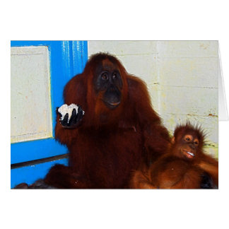 Camp Leakey Orangutan Mother and Baby Card