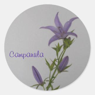 Campanula Flower Classic Round Sticker