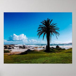 """Camps Bay South Africa"" JTG Art Poster"
