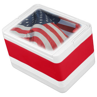 Can Cooler/American Flag