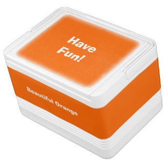 Can Cooler Orange