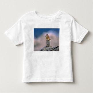 Canada, Alberta, Banff NP. A Golden-mantle Toddler T-shirt