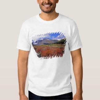 Canada, Alberta, Banff NP. Huckleberries bloom Tshirts