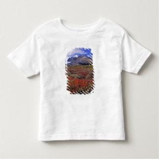 Canada, Alberta, Banff NP. Huckleberries provide Tee Shirt