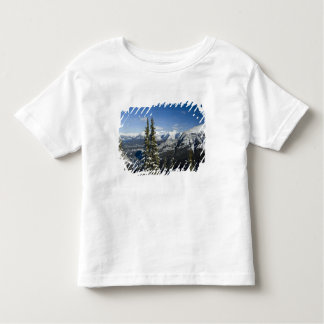 Canada, Alberta, Banff. Views of the Bow Valley Toddler T-shirt