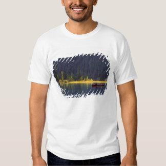 Canada, Alberta, Baniff National Park. Two boys T-shirts