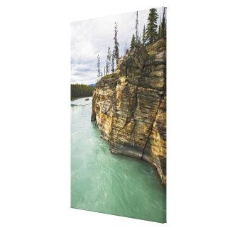 Canada, Alberta, Jasper National Park, Athabasca Canvas Print