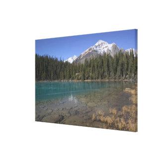 Canada, Alberta, Jasper National Park: JASPER, Canvas Print