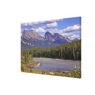 Canada, Alberta, Jasper National Park. Large Canvas Print