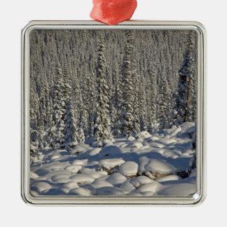 Canada, Alberta, Jasper National Park. Silver-Colored Square Ornament