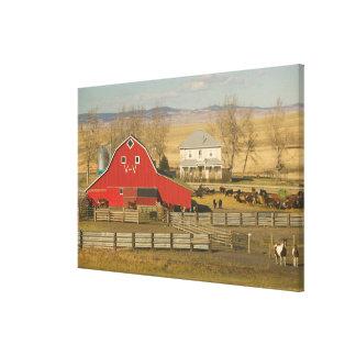 Canada, Alberta, Pincher Creek: Red Barn & Ranch Canvas Print
