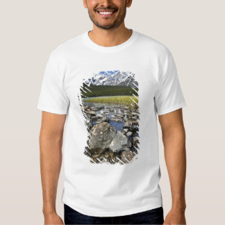 Canada, Alberta, Rocky Mountains, Banff National T Shirt