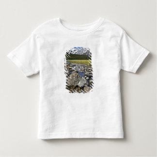 Canada, Alberta, Rocky Mountains, Banff National Toddler T-shirt