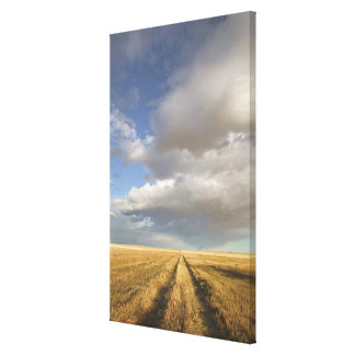 Canada, Alberta, Stand Off: Landscape with Canvas Print