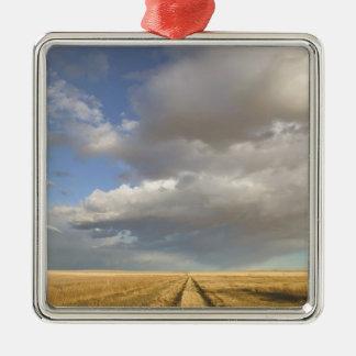 Canada, Alberta, Stand Off: Landscape with Silver-Colored Square Ornament