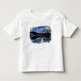 Canada, British Columbia, Banff. Kayak bow on Toddler T-shirt