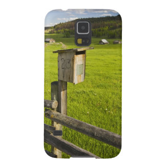 Canada, British Columbia, bluebird house on Cases For Galaxy S5