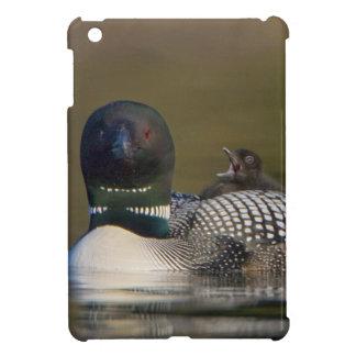 Canada, British Columbia,Common Loon, breeding 2 iPad Mini Covers