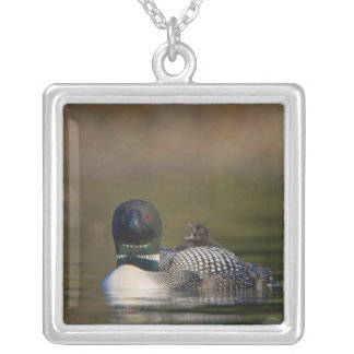 Canada British Columbia Common Loon breeding 2 Custom Necklace